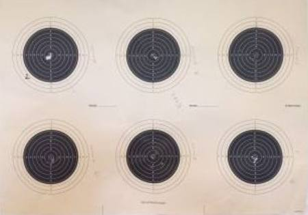 6-Bull 50m outdoor targets